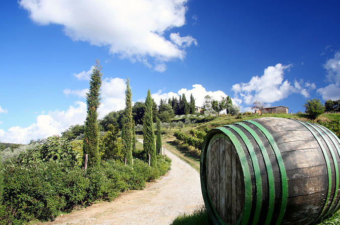 Tour of the chianti region and brunello wine tasting from san in san gimignano 289428