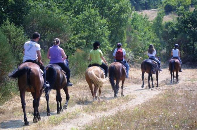 Tuscan Hills Horseback Riding Tour from Siena