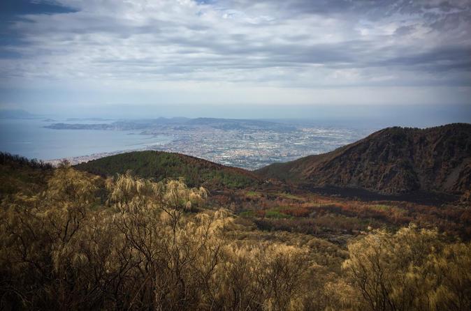 Mount Vesuvius day trip from Naples
