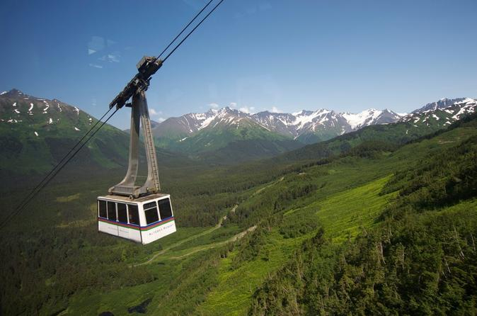 Anchorage Shore Excursion: Post-Cruise Transfer and Tour - Whittier to Anchorage