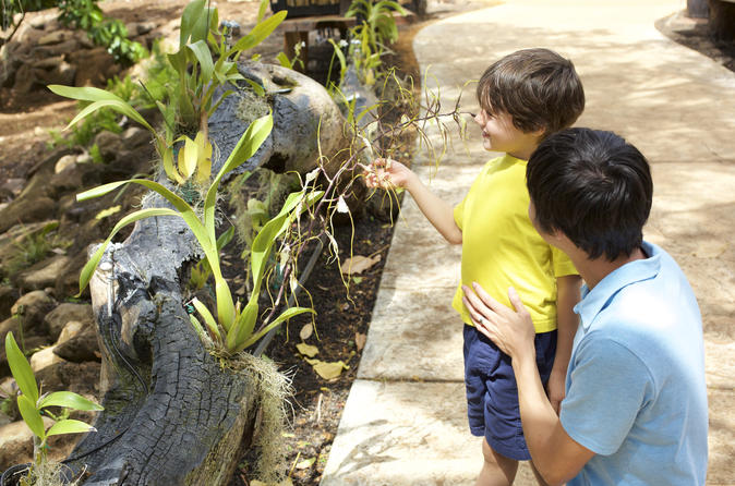McBryde Garden Self Guided Tour - Kauai