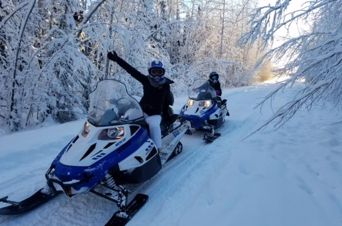 Snowmobile Adventure from Fairbanks