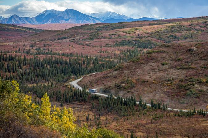 Denali Backcountry Adventure - Denali National Park And Preserve