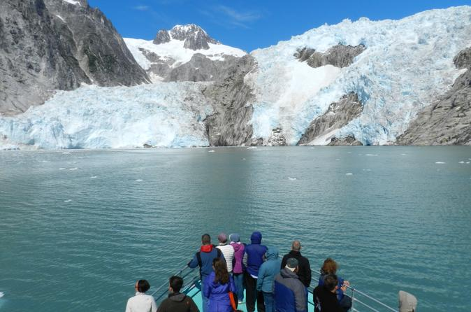 Northwestern fjord sightseeing cruise from seward in anchorage 169343
