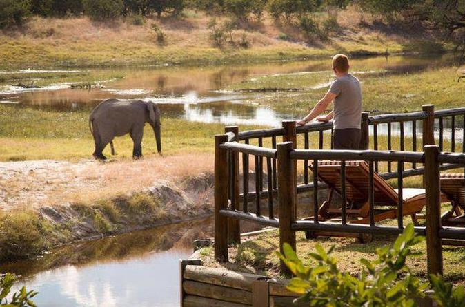 Four Nights At One Of The Most Luxurious Lodges In Northern Botswana - Maun