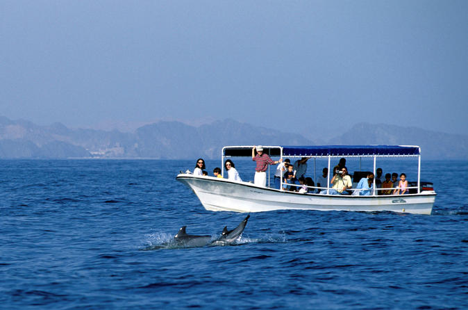 DOLPHINS AND SNORKELING TRIP