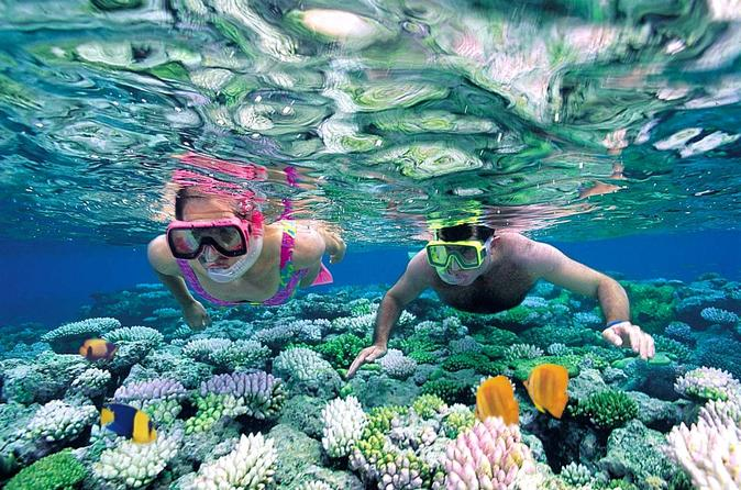 Excursão com mergulho com snorkel para Ilha Catalina saindo de Punta Cana