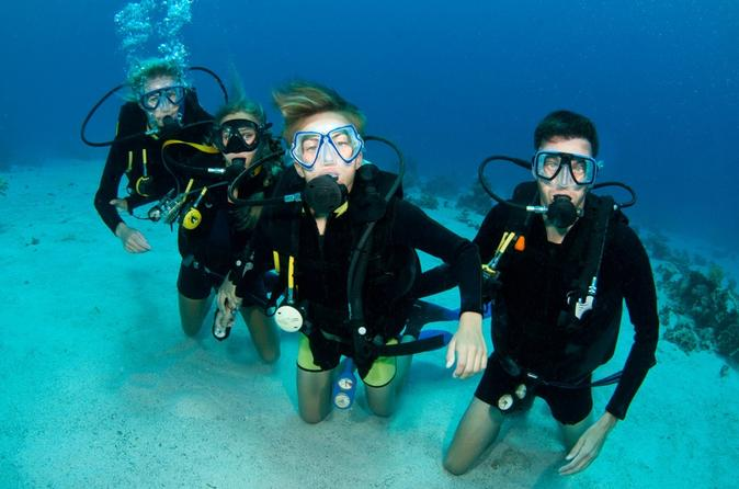 Punta Cana 2- or 3-Day PADI Certification Scuba Diving Course