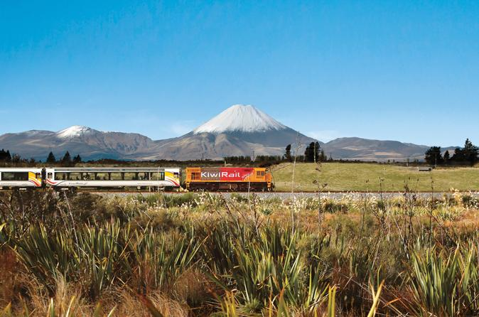 Full-Day Wellington to Auckland Scenic Train Ride