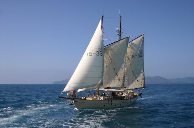 Tallship sailing and snorkeling adventure from the whitsundays in whitsundays 136879