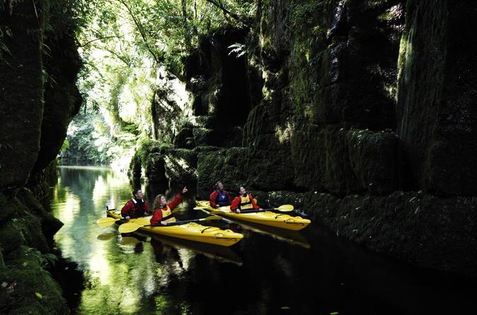 Tauranga Shore Excursion: Scenic Lake McLaren Kayak Tour