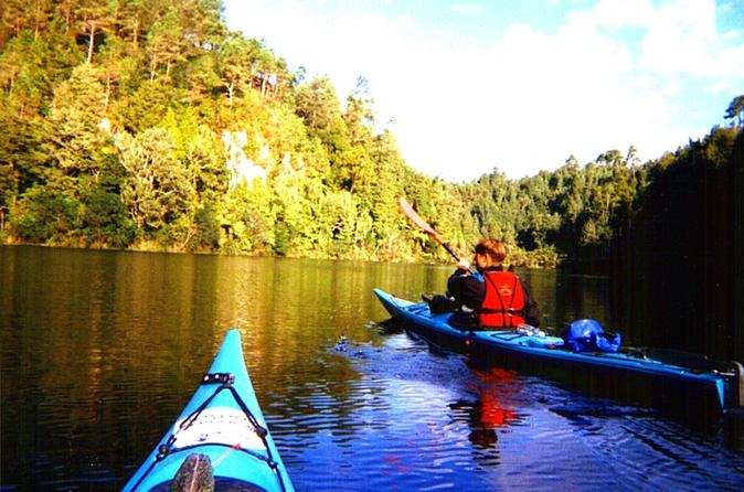 Tauranga Shore Excursion: Wairoa River Kayak Tour