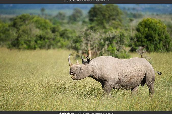 DAY TO TO OLPEJETA CONSERVANCY