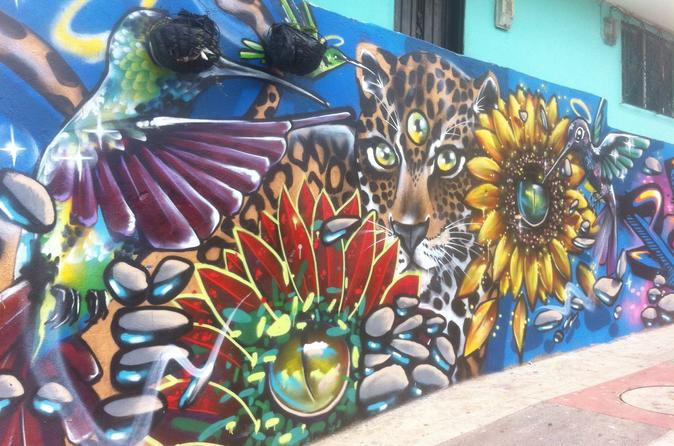 Full Day Private Medellín City, Street Art and Food Tour