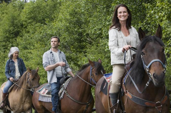 Horseback riding adventure from medell n in medell n 173612