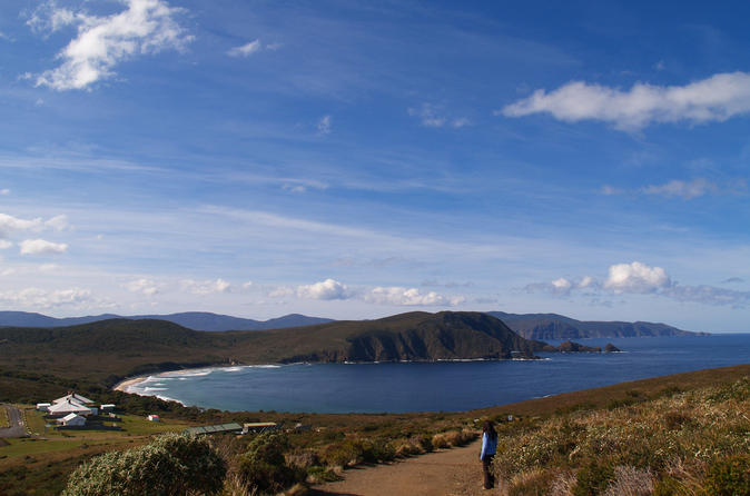 Bruny island sightseeing and gourmet tour from hobart in hobart 139562