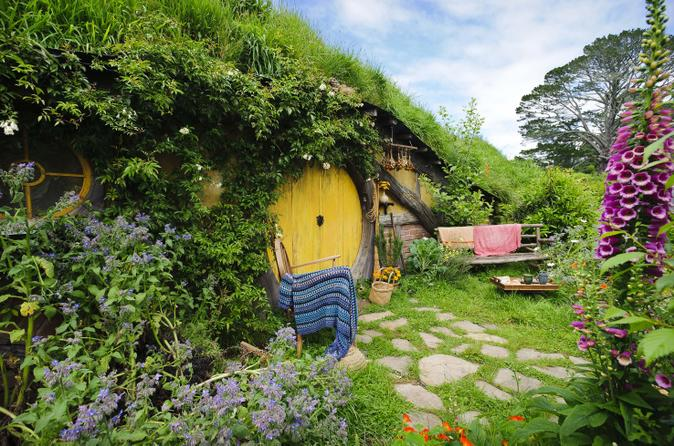 Tauranga shore excursion lord of the rings hobbiton movie set tour in tauranga 163915