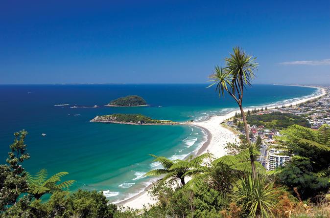 Tauranga Shore Excursion: Small-Group Bay of Plenty and Tauranga Tour