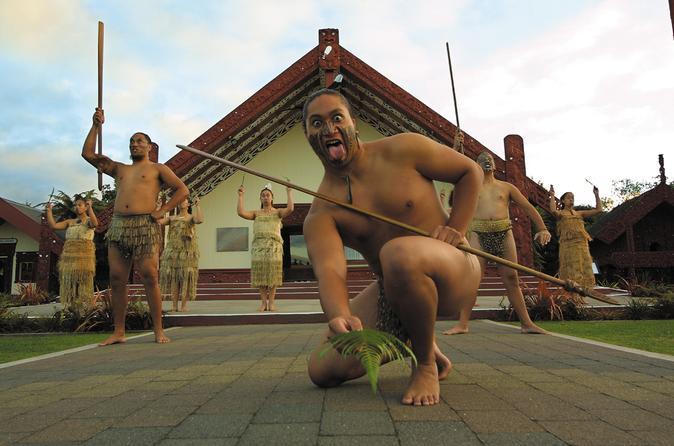 Tauranga shore excursion te puia maori cultural centre and rotorua in tauranga 140537