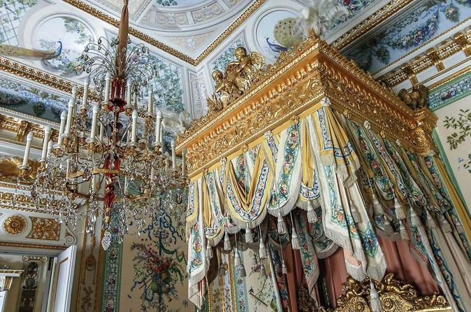 Private Tour to Catherine's Palace in Tsarskoye Selo and Pavlovsk Palace