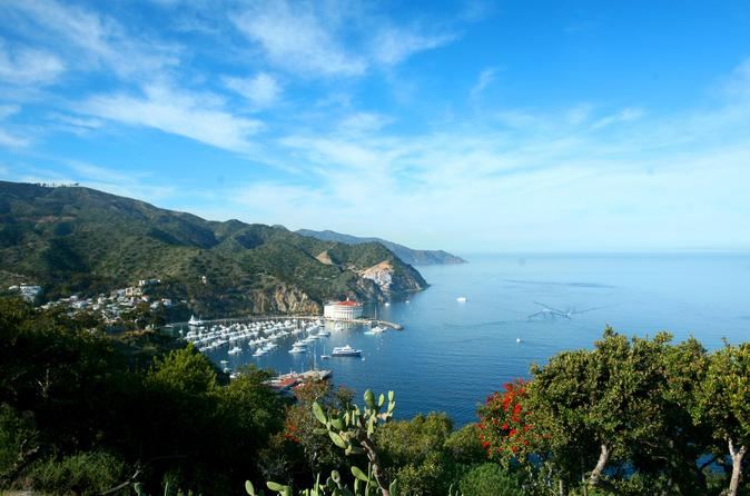 Catalina island day trip from anaheim or los angeles with optional in anaheim buena park 458100