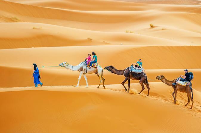 Full-Day Sahara Desert Camel Trek In Douz