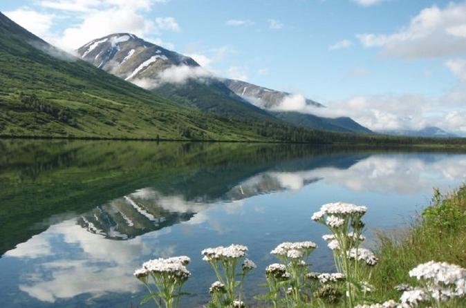 Anchorage to Seward Cruise Transfer and Private Tour
