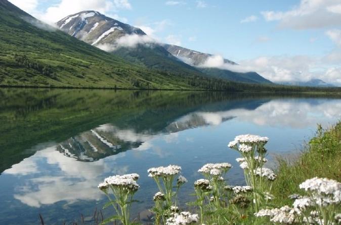 Anchorage to Seward (Large Group)