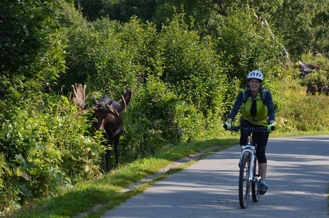 Alaska Walking & Biking Tours