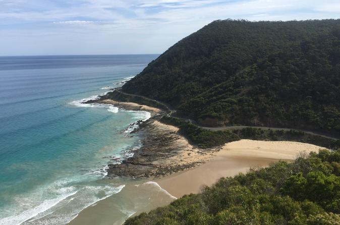The Great Ocean Road Bike and Bush Adventure from Melbourne