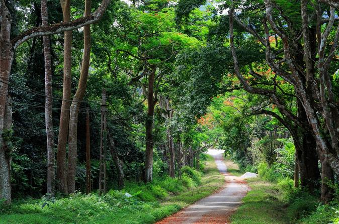 Full day discover northern phu quoc island in phu quoc 445677
