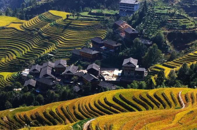 Guilin Bus Tour of Longji Rice Terraces at Jinkeng Village