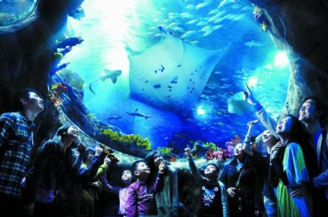 Skip the Line: Hong Kong Ocean Park Admission