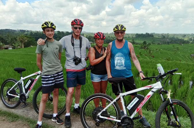 Jatiluwih Full Day E-bike Cycling With Picnic Lunch & Trekking Program - Ubud
