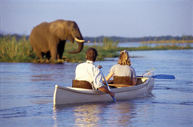 Kayak safari on the zambezi river with transport from livingstone in livingstone 145506