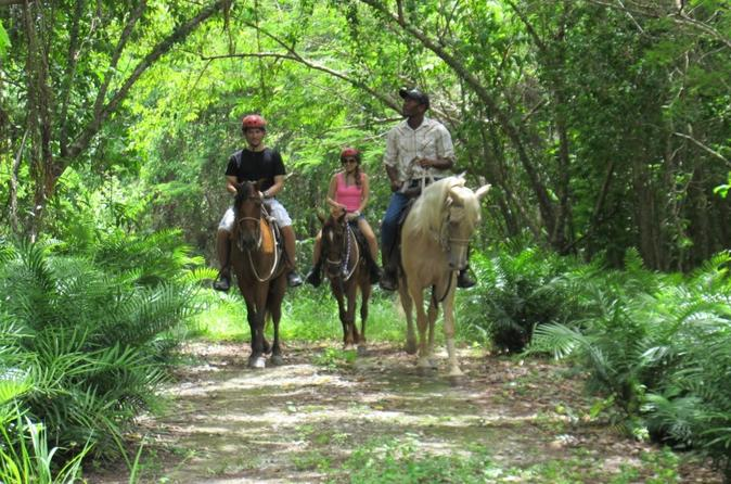 Countryside Horseback Riding at Scape Park