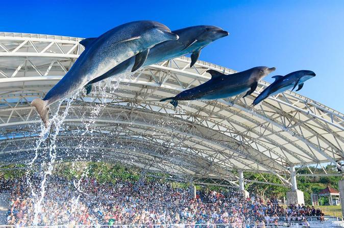General Admission to Okinawa Churaumi Aquarium