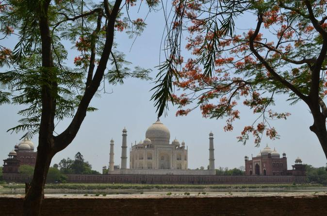 Golden Triangle Tour for Five Days-Four Nights