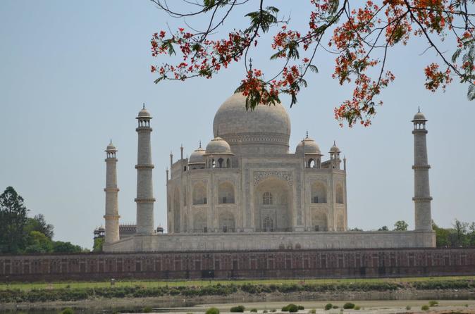 Same Day Private Tour of Taj Mahal