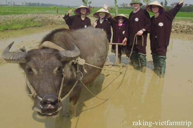 GREEN FARM FULL DAY TOUR WITH LOCAL FAMILY IN HANOI