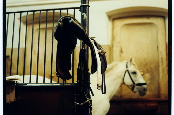 Guided Tour of the Spanish Riding School