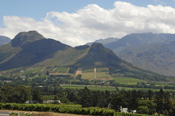 Private Tour: Western Cape and Swartland Wine Route Day Trip from Cape Town Including Riebeek Kasteel