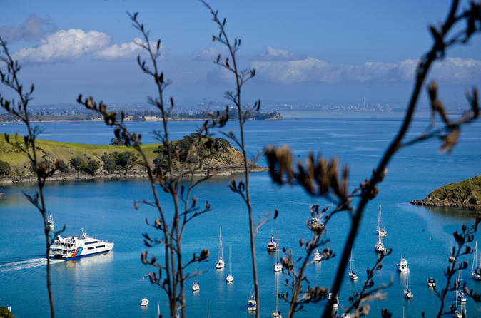 Waiheke island tour from auckland in auckland 145651