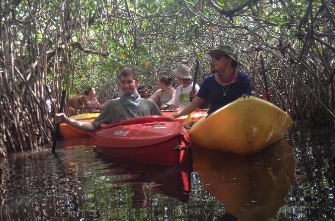 Belize Kayak Fishing & Food Tour - Belize City