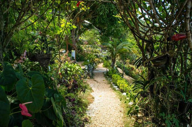 Ahhh Ras Natango Gallery and Garden Tour from Montego Bay