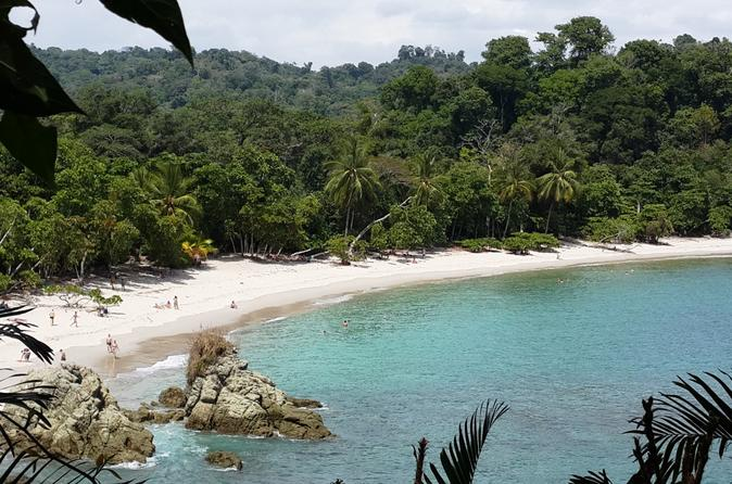 Manuel Antonio National Park Sightseeing and Wildlife Day Tour from San Jose