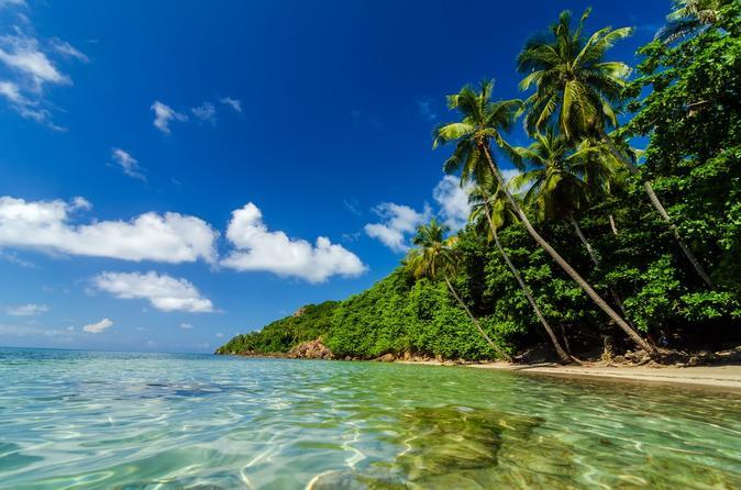 Viagem diurna para o Aquário Rodadero e Playa Blanca saindo de Santa Marta