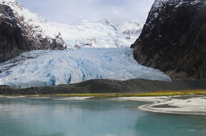 Balmaceda and serrano glaciers sightseeing cruise from puerto natales in puerto natales 428552