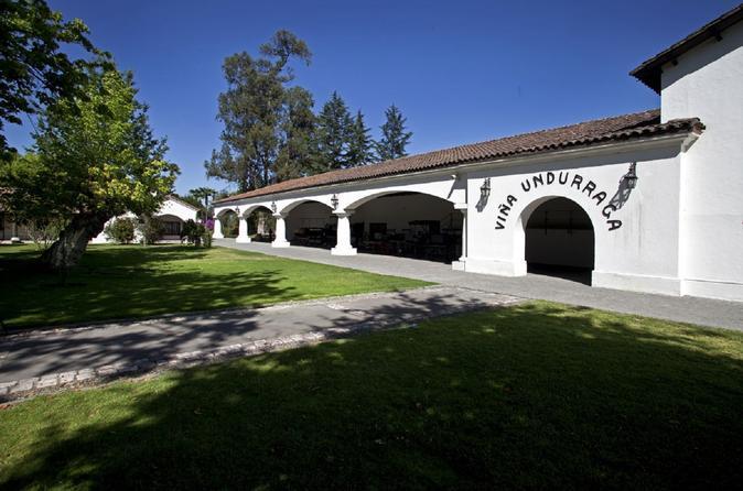 Undurraga Wine Tasting Tour from Santiago