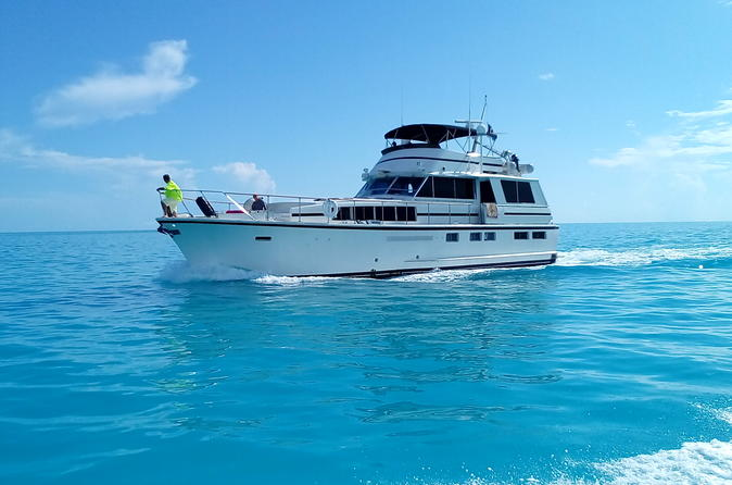65 foot Motor Yacht Cruise Snorkel charter